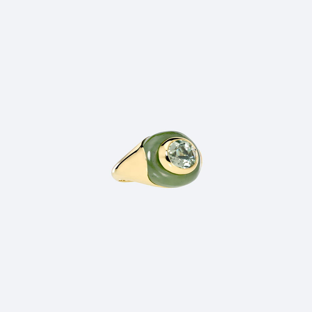 anel-igapo