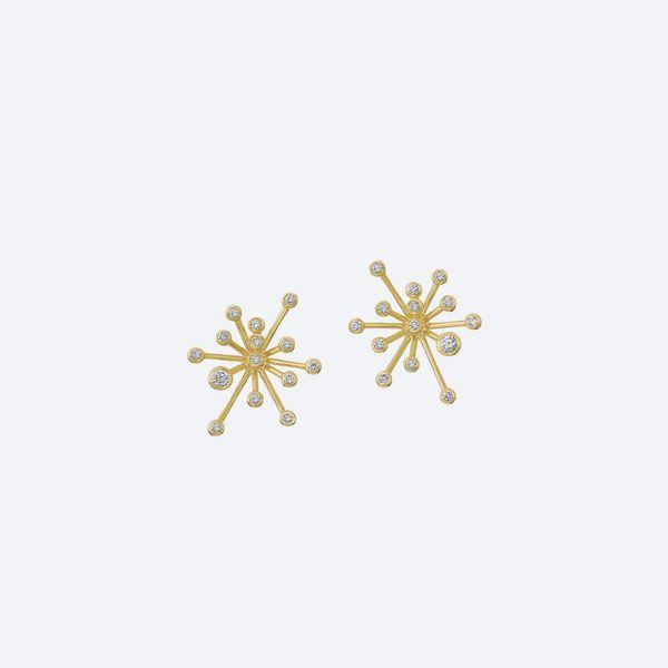 Constellation_Sparkle_Brincos_P2